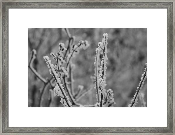 Frost 1 Framed Print