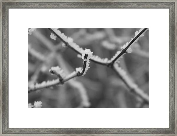 Framed Print featuring the photograph Frost 6 by Antonio Romero