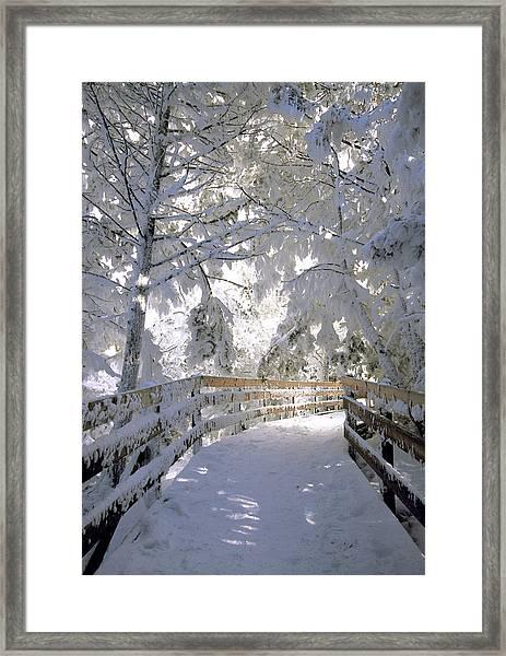 Frosty Boardwalk Framed Print