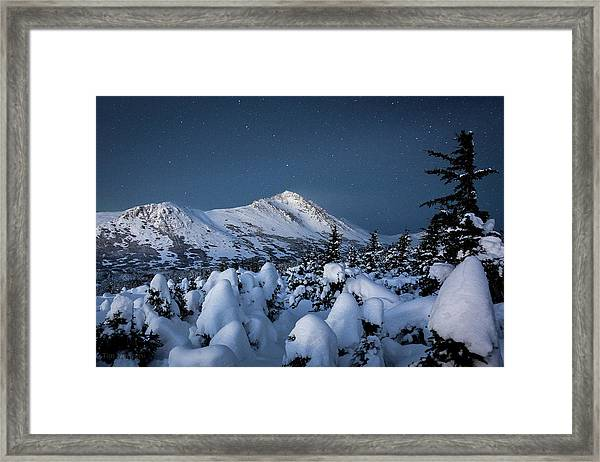 Frosty False Omalley C Framed Print
