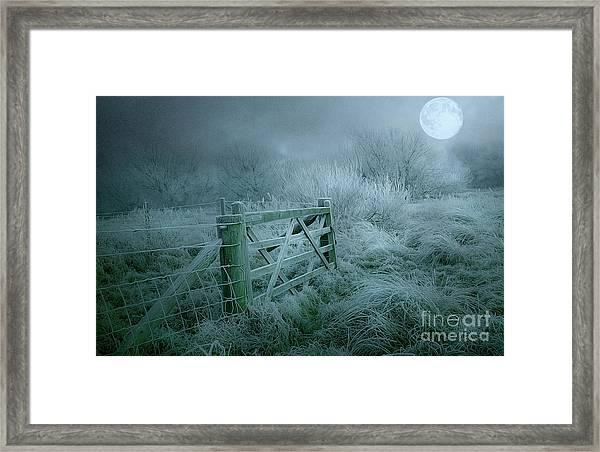 Frosty Night Framed Print