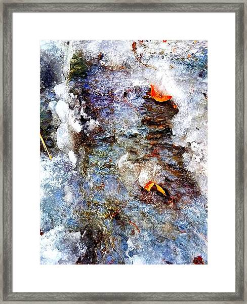 Frozen Bank  Framed Print