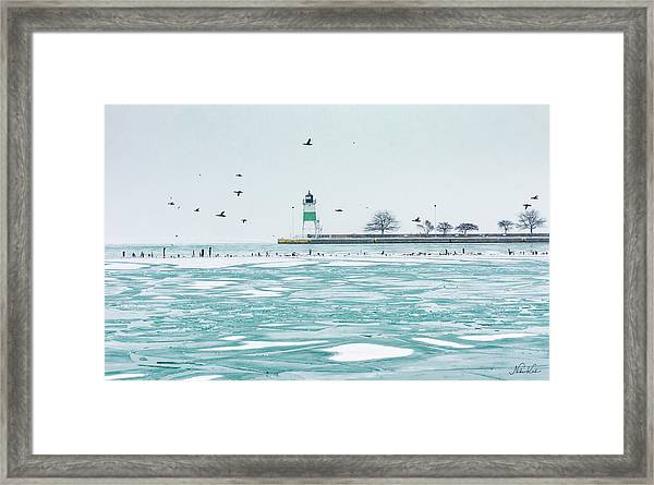 Frozen In Chicago Framed Print