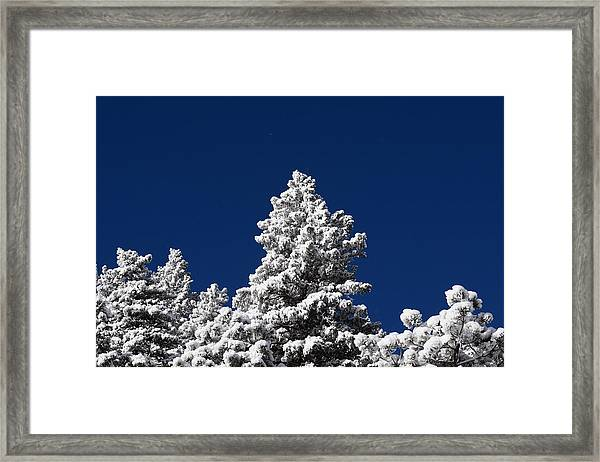 Frozen Tranquility Ute Pass Cos Co Framed Print
