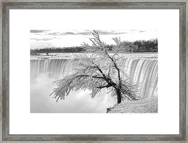 Frozen Tree Near Niagara Falls Framed Print