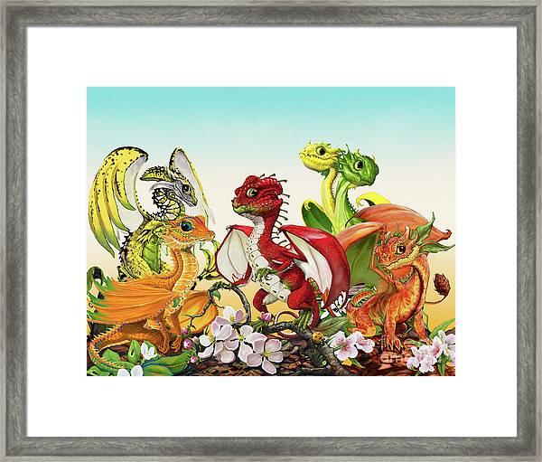 Fruit Medley Dragons Framed Print