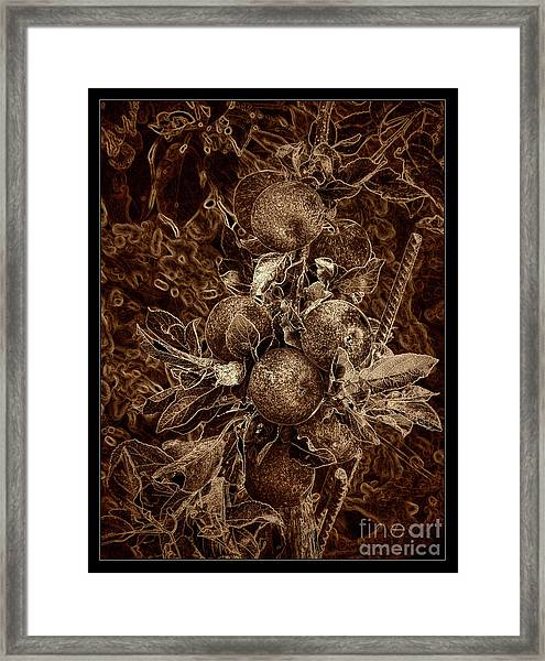 Fruits Of The Loom Framed Print