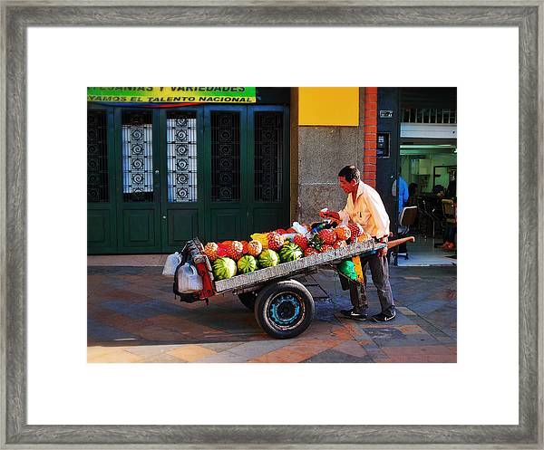 Fruta Limpia Framed Print