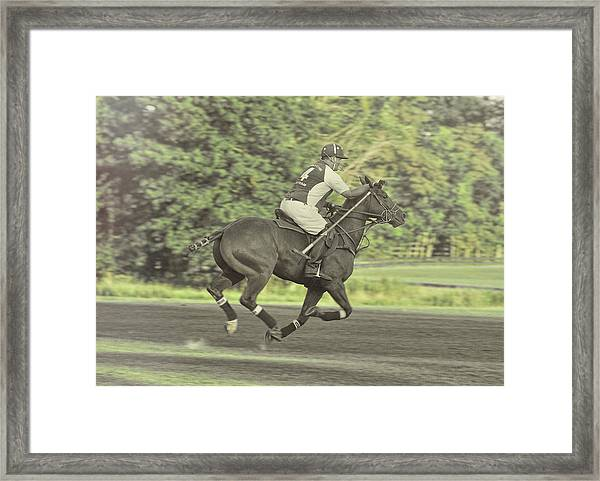 Full Gallop Pony Framed Print by JAMART Photography