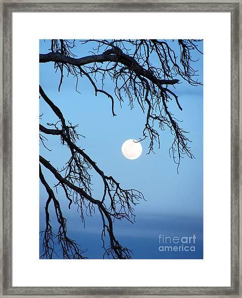 Full Moon Blue Sky Framed Print