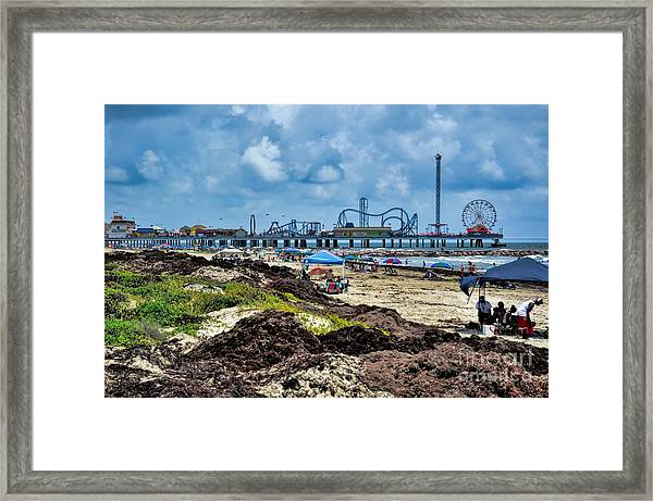 Fun On The Beach Framed Print