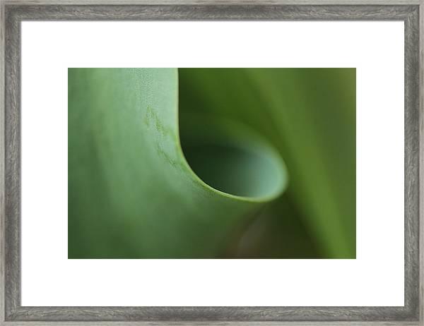 Funnel Vision Framed Print