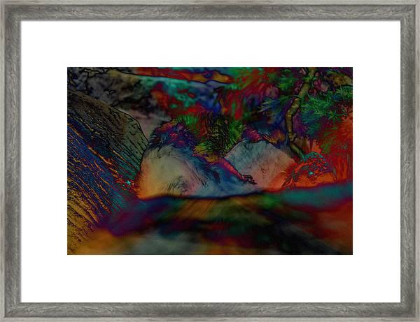 Furred Fiend Framed Print by John Ricker