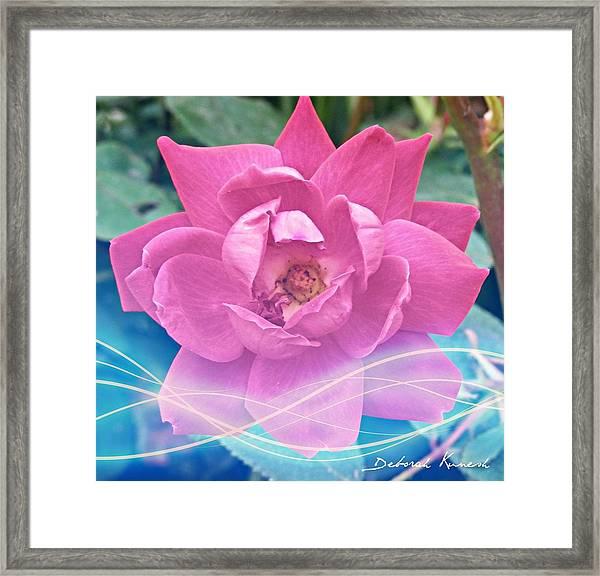 Fuschia Flower Energy Framed Print