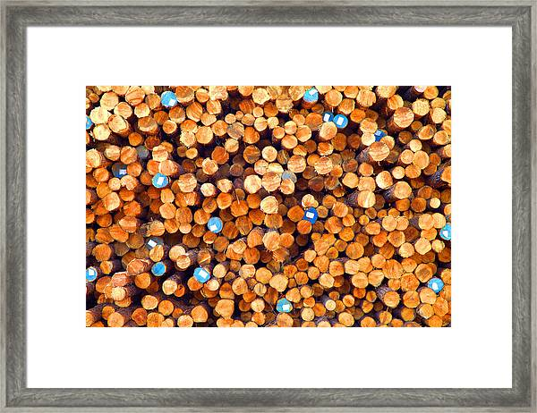 Future Two By Fours Framed Print