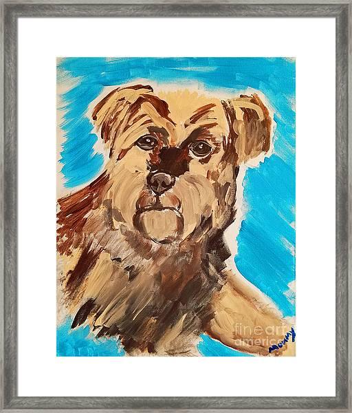 Fuzzy Boy Framed Print