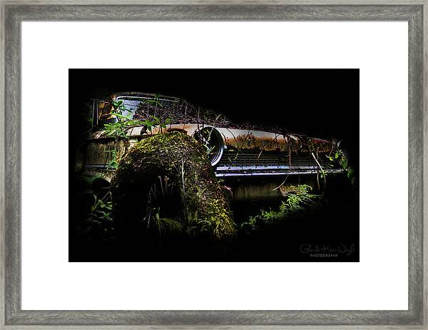 Framed Print featuring the photograph Galaxie Tree Bromance by Glenda Wright