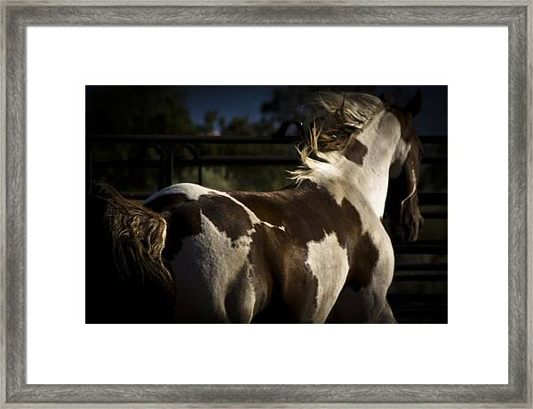 Framed Print featuring the photograph Galisteo 1 by Catherine Sobredo