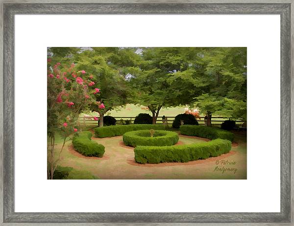 Garden At Colonial Heights Framed Print