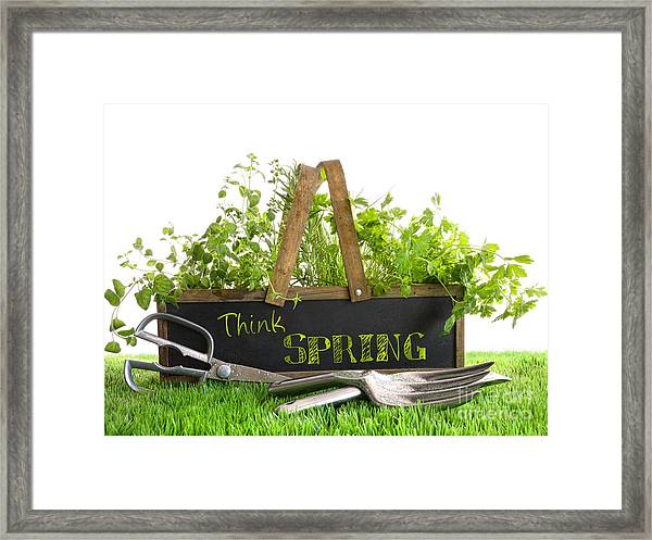 Garden Box With Assortment Of Herbs And Tools Framed Print