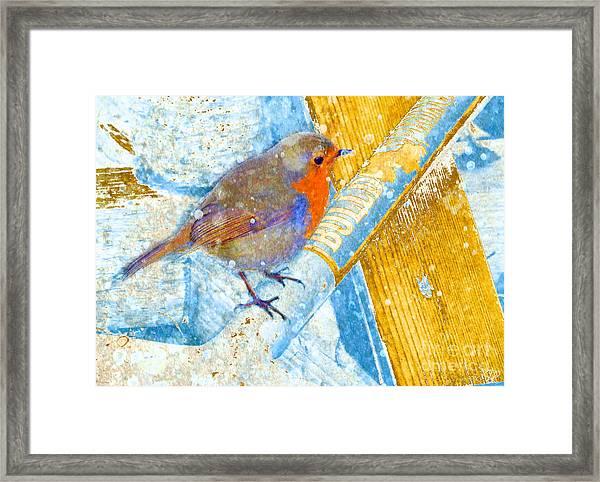 Garden Robin Framed Print