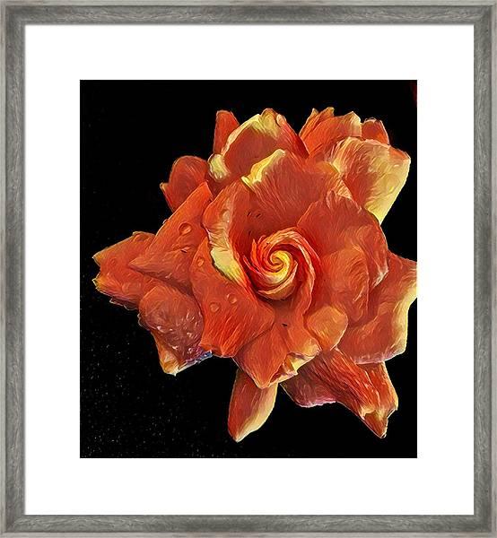 Gardenia For Madam Pele Framed Print