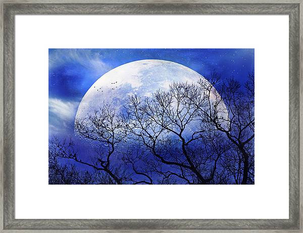 Gather For The Evening Framed Print