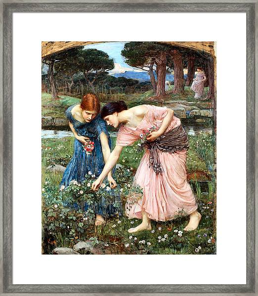 Gather Ye Rosebuds While Ye May Framed Print