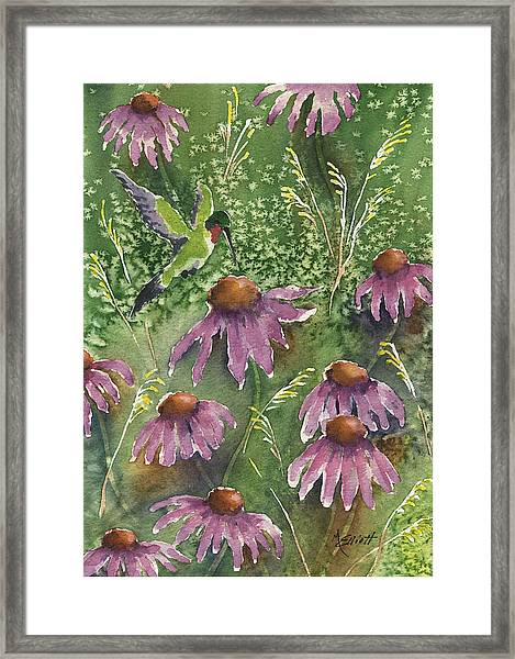 Gathering Nectar Framed Print
