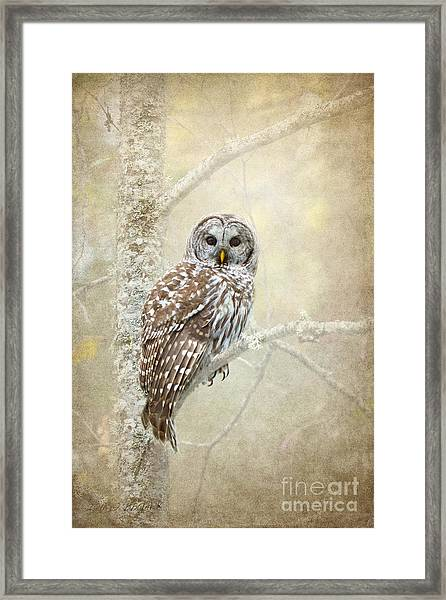 Guardian Of The Woods II Framed Print
