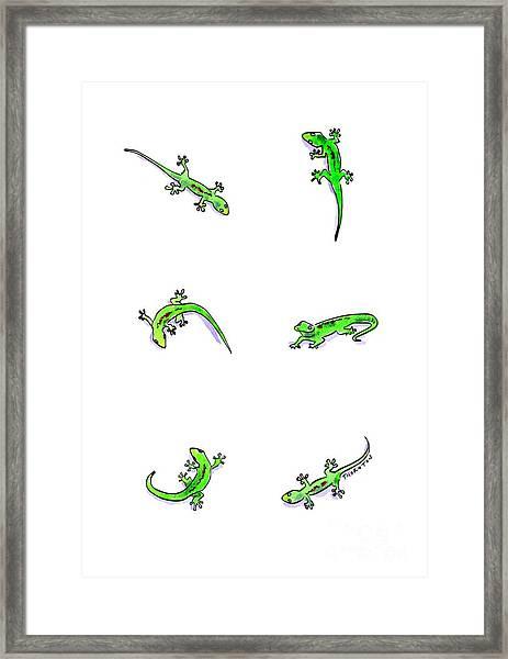 Gecko Play Framed Print