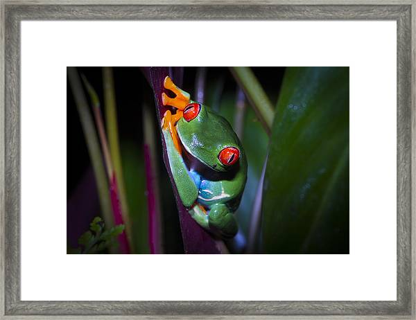 Generously Green Framed Print