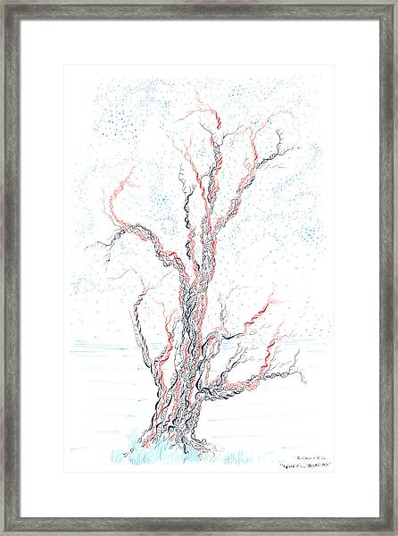 Genetic Branches Framed Print