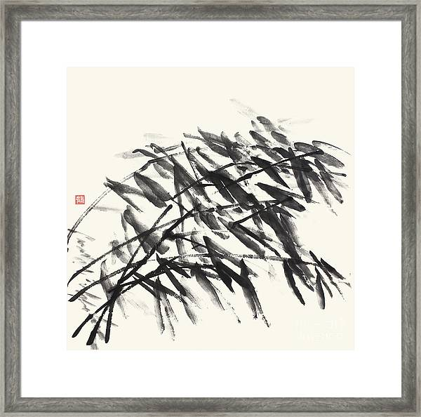 Gentle Bending Bamboo - Homage To Catalonia Framed Print