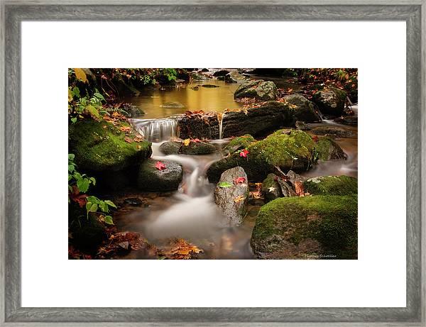 Gentle Cascades Of Autumn  Framed Print