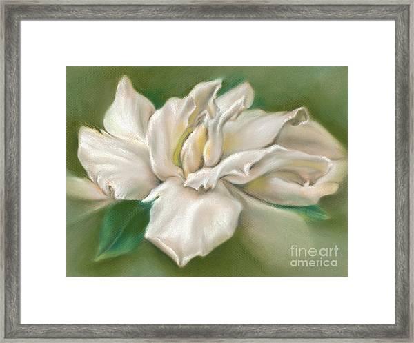 Gentle Gardenia Framed Print