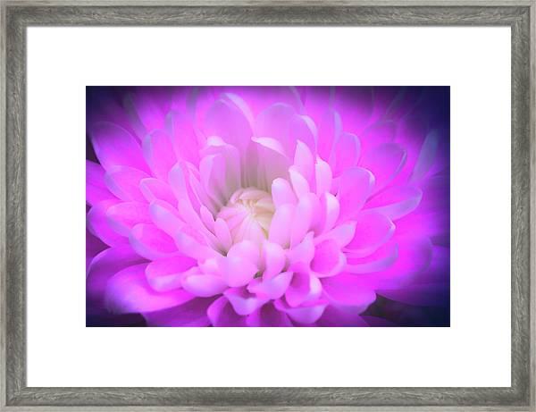 Gentle Heart Framed Print