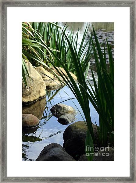 Gentle Water Framed Print