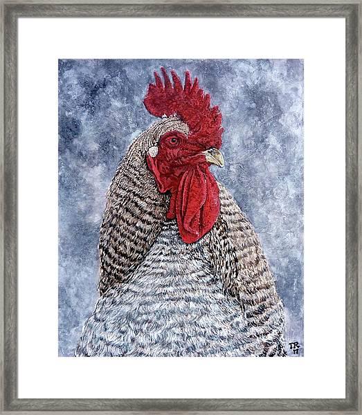 Geoff Framed Print