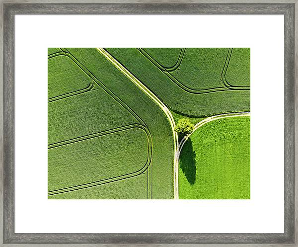 Geometric Landscape 05 Tree And Green Fields Aerial View Framed Print
