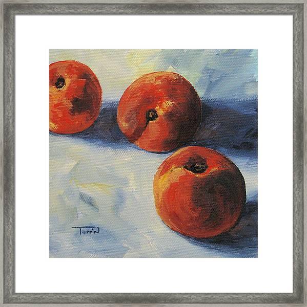 Georgia Peach Framed Print