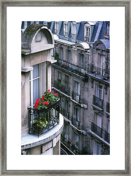 Geraniums - Paris Framed Print