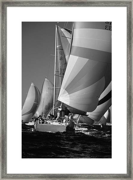 Getting Ready To Round The Ark Framed Print