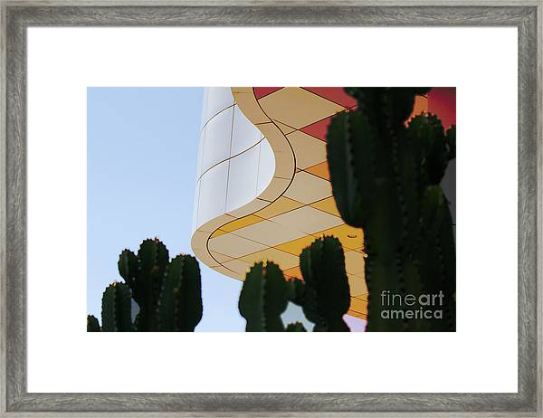 Getty Architecture Cactus Color Curves  Framed Print
