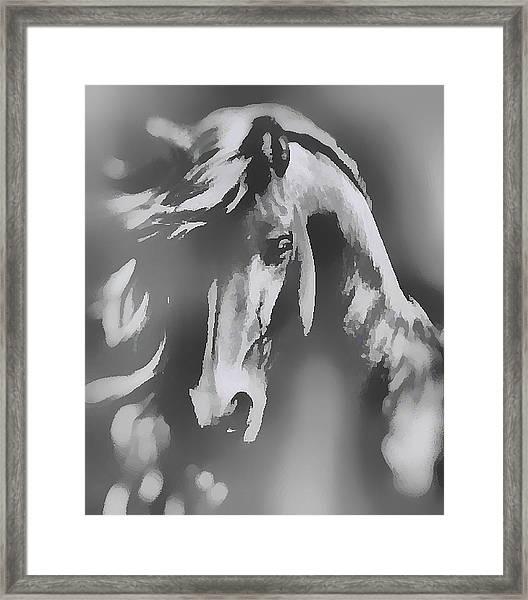 Ghost Horse Framed Print