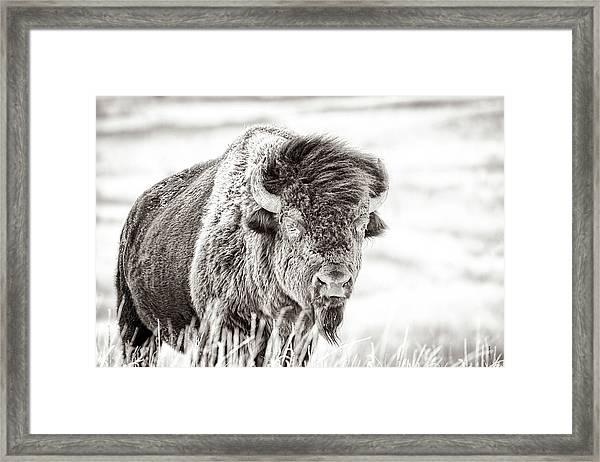 Ghost Of The Prairie Framed Print