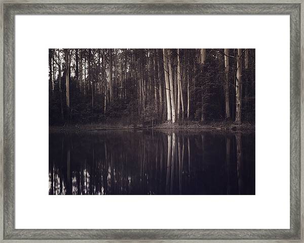 Ghosts Of My Heart Framed Print
