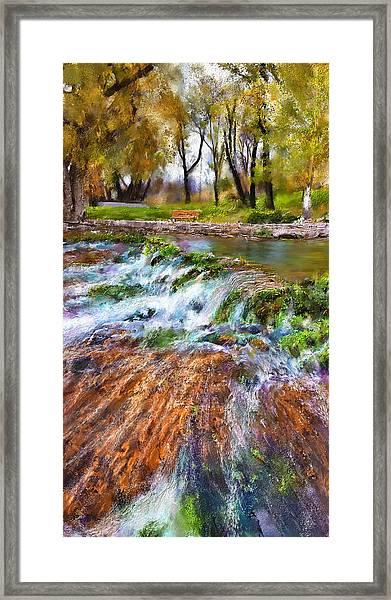 Giant Springs 2 Framed Print
