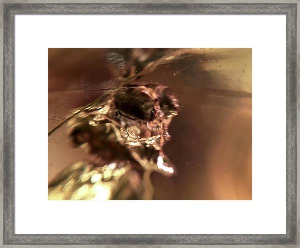 Giger Flower, A Monster Framed Print