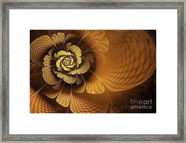 Gilded Flower Framed Print